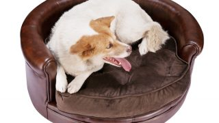 Villacera Chesterfield Faux Leather Dog Bed