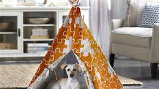 Merry Products Pet Teepee