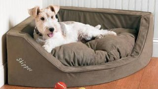 Luxury Corner Dog Bed