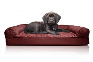 Quilted Orthopedic Sofa-Style Dog Bed
