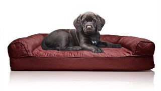 大型犬まで可能なお洒落ドッグベッド/Quilted Orthopedic Sofa-Style Dog Bed