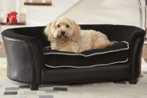 Pet Panache Bed
