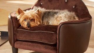 シンプルで綺麗な曲線デザインのドッグベッド/Features Washable Dog Bed