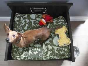 Dog Bed with Storage