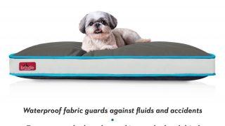 サラサラ撥水・速乾素材のドッグベッド/Waterproof Dog Bed