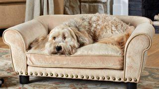 人気のドッグベッドがセール中/Dog Sofa Bed Carmelcolor