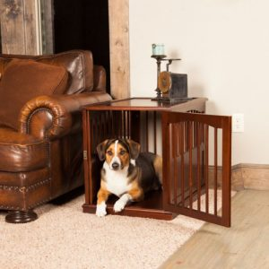 Walnut Dog Crate End Table