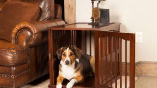 高級感あるウォルナット材のドッグクレート/Walnut Dog Crate End Table