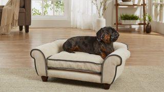 ベージュのお洒落なドッグベッド/Velvet Dog Bed