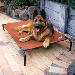 夏場に最高のクールドッグベッド/Coolaroo Elevated Dog Bed