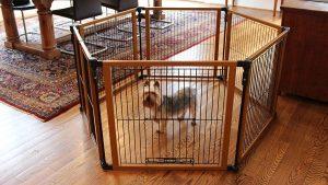 お洒落で便利なドッグゲートシステム/Cardinal Gates Perfect