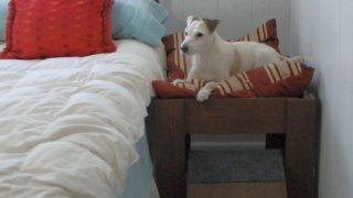 ベッドサイドにおける愛犬用ドッグベッド/Dog Bed with Step