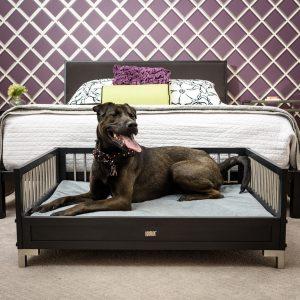 シンプルモダンなドッグベッド/EcoFLEX Manhattan Dog Sofa