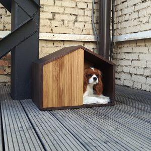 本格家具調のペット用コンセプトハウス/Pettel Effect House